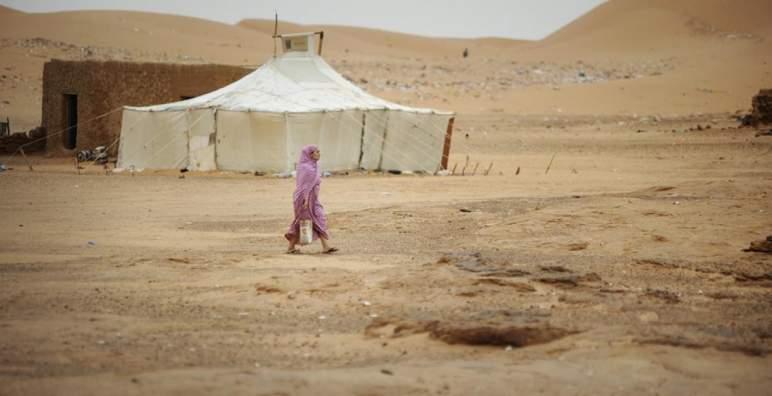 الممثل الدائم للمغرب لدى الأمم المتحدة يفضح انتهاكات حقوق الإنسان في مخيمات تندوف